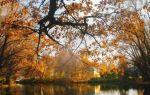 Болдинская осень Пушкина