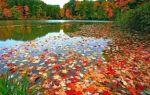 Стихотворение «Осень»