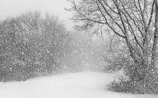 «Зимний вечер» (Пушкин): метафоры, эпитеты, сравнения, олицетворения