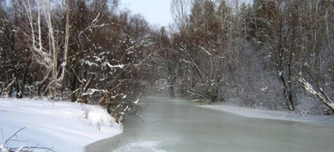 «Опрятней модного паркета блистает речка, льдом одета…»