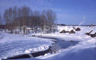 Зимнее утро («Мороз и солнце, день чудесный…»): тема и идея