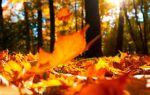 «19 октября» («Роняет лес багряный свой убор»)