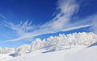 «Зимнее утро» (Пушкин): метафоры, эпитеты, сравнения, олицетворения