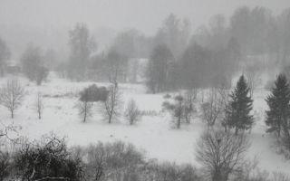 Тема и идея стихотворения «Зимний вечер»