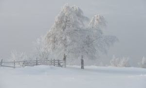 «Зимний вечер»: анализ стихотворения