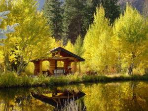 Природа осенью