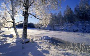 Мороз и солнце день чудесный