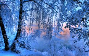Стихи Пушкина о зиме